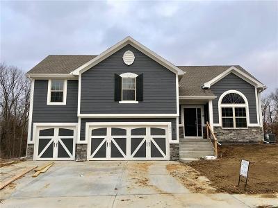 Kearney Single Family Home For Sale: 1311 Melissa Court