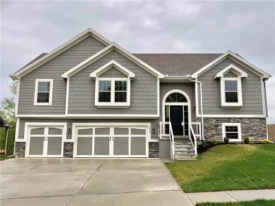 Kearney Single Family Home For Sale: 1313 Melissa Court