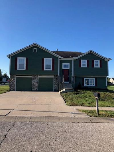 Grain Valley Single Family Home For Sale: 601 SW Tisha Lane