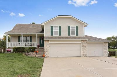 Raymore Single Family Home Show For Backups: 1013 Redwood Drive