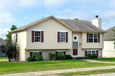 Raymore MO Single Family Home For Sale: $179,900