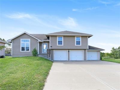 Excelsior Springs MO Single Family Home For Sale: $190,000