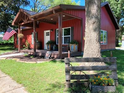 Livingston County Single Family Home For Sale: 230 Mansur Street