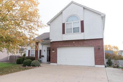 Grain Valley Single Family Home For Sale: 427 SW Oak Wood Lane