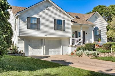 Lee's Summit Single Family Home For Sale: 116 SE Gemstone Circle
