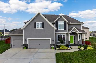 Kansas City Single Family Home For Sale: 9423 N Revere Avenue