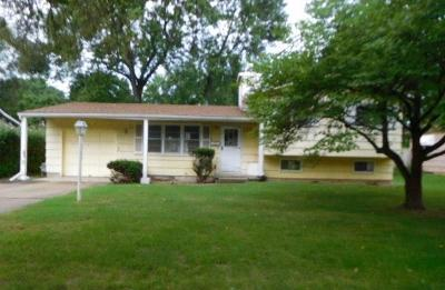 Shawnee Single Family Home For Sale: 7306 Larsen Lane