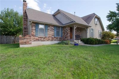 Lee's Summit Single Family Home For Sale: 3701 NE Ellison Drive