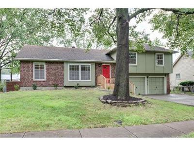 Overland Park Single Family Home For Sale: 9615 Walmer Street