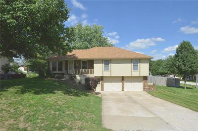 Clay County Single Family Home For Sale: 1112 NE 114th Terrace