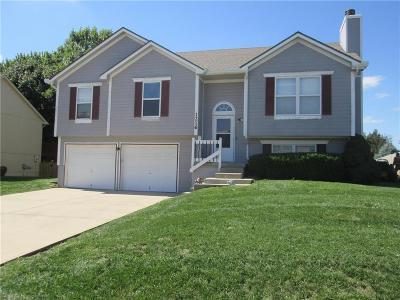 Lee's Summit Single Family Home For Sale: 1216 NE Green Street