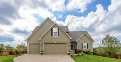 Bonner Springs Single Family Home For Sale: 16181 150th Street