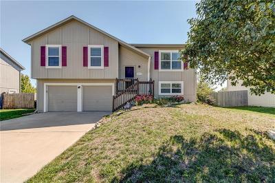 Gardner Single Family Home For Sale: 31993 W 172nd Street
