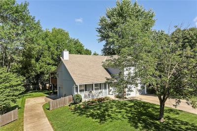 Belton Single Family Home For Sale: 512 Valle Drive