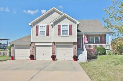Raymore MO Single Family Home For Sale: $259,900