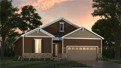Lee's Summit MO Single Family Home For Sale: $284,595