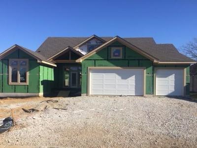 Lenexa Single Family Home For Sale: 8102 Millridge Street