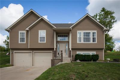 Lone Jack Single Family Home For Sale: 202 E Whispering Hills Boulevard