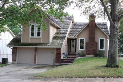 Lee's Summit Single Family Home For Sale: 703 NE Burning Tree Street