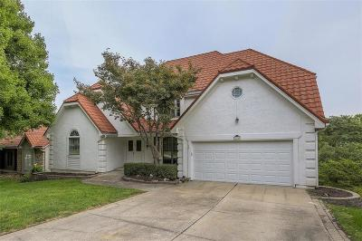 Lee's Summit Single Family Home For Sale: 424 NE Brockton Drive