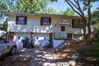 Blue Springs Single Family Home For Sale: 405 NE Summit Drive