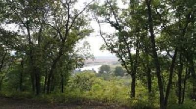 Andrew County Residential Lots & Land For Sale: Co Rd 401 Road