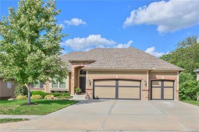 Kansas City Single Family Home For Sale: 14510 NW 61st Street