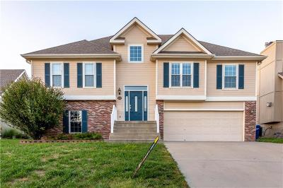 Smithville Single Family Home For Sale: 416 Shannon Avenue