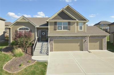 Kansas City Single Family Home For Sale: 10011 N Hunter Avenue