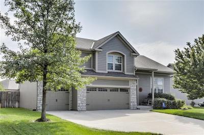 Gardner Single Family Home For Sale: 665 S Elm Street