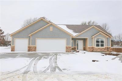 Belton MO Single Family Home For Sale: $388,900