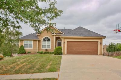 Kansas City Single Family Home For Sale: 10925 N Lane Avenue
