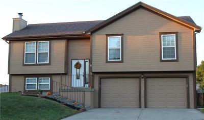 Smithville Single Family Home For Sale: 203 Porter Drive