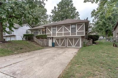 Raytown Single Family Home For Sale: 7816 Woodson Road