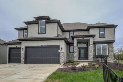 Overland Park Single Family Home Model: 10710 W 171 St Terrace