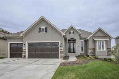Overland Park Single Family Home Model: 10718 W 171st Terrace
