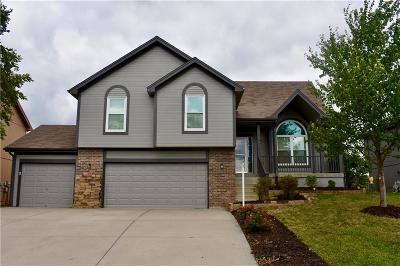 Kansas City Single Family Home For Sale: 9100 NE 111th Street
