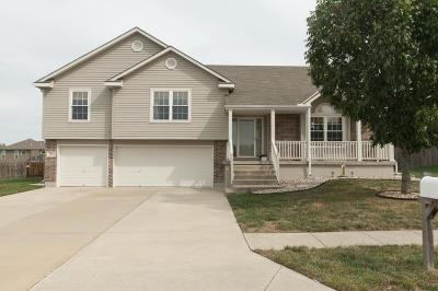 Grain Valley Single Family Home Show For Backups: 513 SW Brome Drive