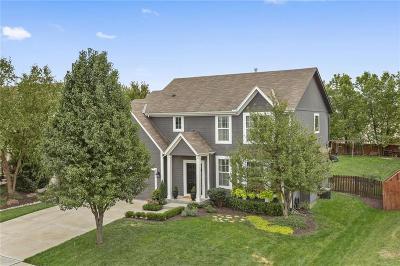 Gardner Single Family Home Contingent: 683 E Mockingbird Street