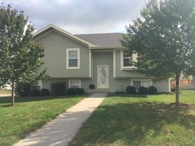 Odessa Single Family Home For Sale: 408 College Terrace