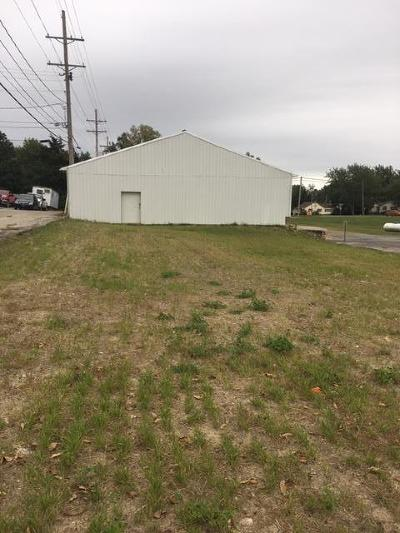 Clinton County Residential Lots & Land For Sale: Walnut Street