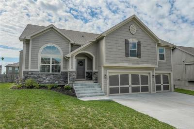 Clay County Single Family Home For Sale: 7909 NE 100th Street