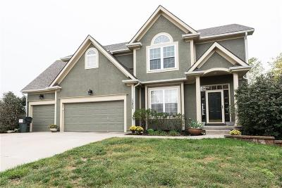 Platte City Single Family Home For Sale: 15835 NW 122nd Street