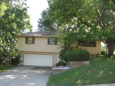 Andrew County Single Family Home For Sale: 6117 N 27th Street Terrace