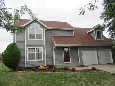 Gardner Single Family Home For Sale: 474 N Birch Street
