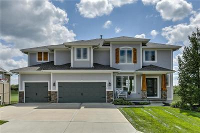 Olathe Single Family Home For Sale: 25871 W 143rd Terrace