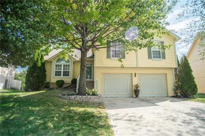 Gardner Single Family Home For Sale: 18509 Juniper Street