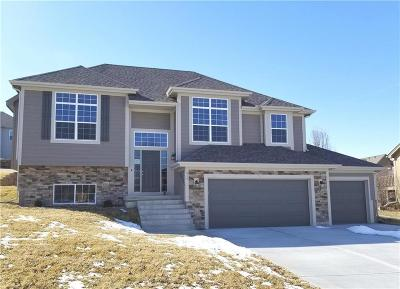 Smithville Single Family Home For Sale: 610 Coach Light Circle