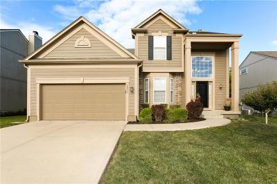 Johnson-KS County Single Family Home For Sale: 15517 S Arapaho Street