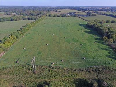 Henry County Residential Lots & Land For Sale: NE C Highway